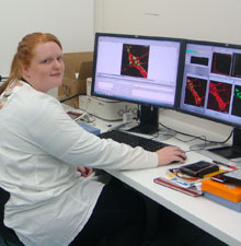 Researcher in Western CHRE lab using confocal microscopy